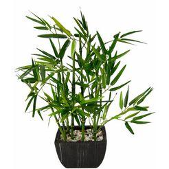 i.ge.a. kunstplant bamboe (1 stuk) groen
