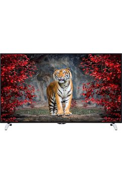 LT-65V73AU, LED-TV, 165 cm (65 inch), 2160p (4K Ultra HD), Smart TV
