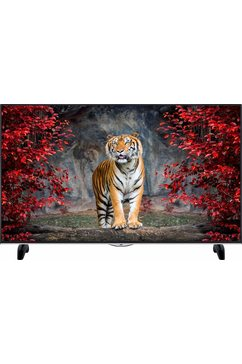LT-49V73AU, LED-TV, 124 cm (49 inch), 2160p (4K Ultra HD), Smart TV