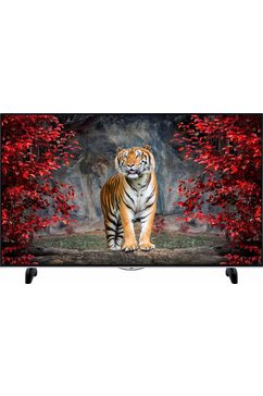 LT-55V73AU, LED-TV, 140 cm (55 inch), 2160p (4K Ultra HD), Smart TV