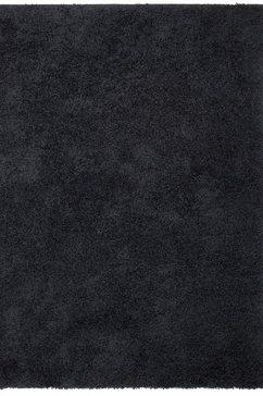 18328230.jpg