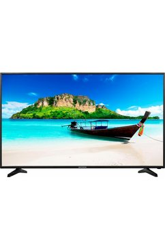 P18090 MD31179, LED-TV, 138 cm (55 inch), 2160p (4K Ultra HD)