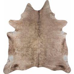 vacht-vloerkleed, luxor living, »koeienvacht 3«, echte runderhuid beige