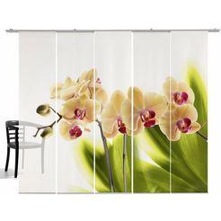 paneelgordijn, emotion textiles, »orchidee« (5-dlg., incl. montageset) wit