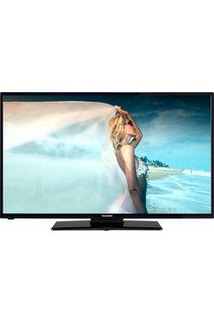 D43F287M4 LED-TV (110 cm/43 inch, Full HD)