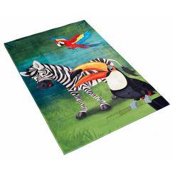 boeing carpet vloerkleed voor de kinderkamer lovely kids 402 multicolor