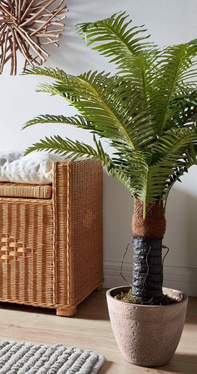 kunstplant varen in de online shop otto. Black Bedroom Furniture Sets. Home Design Ideas