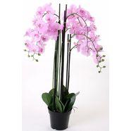 kunstorchidee »orchidee xxl« roze