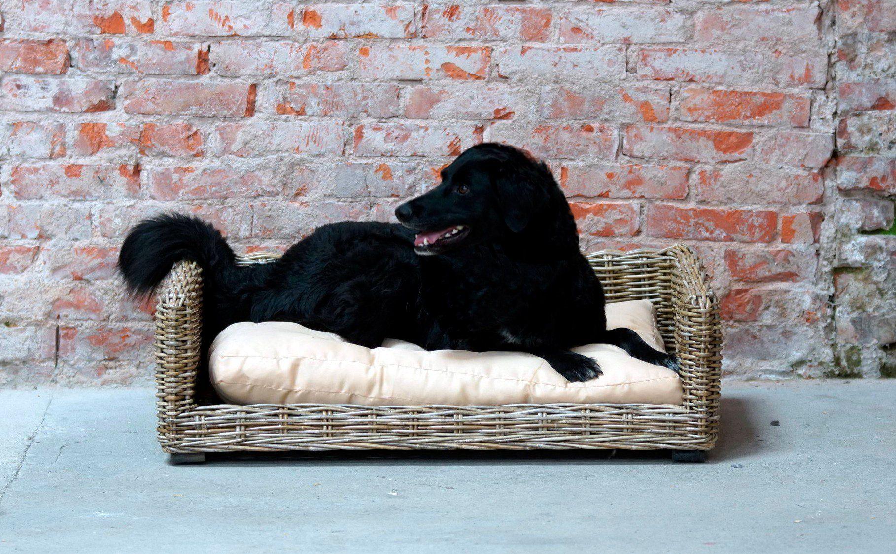 Design Voor Honden : Silvio design honden en kattenbankje online bestellen otto