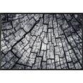 wash+dry by kleen-tex mat timber inloopmat grijs