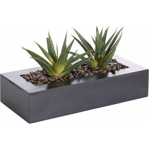 Kunstplant-arrangement in 2 varianten