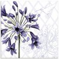 artland print op glas kolibrie dans i (1 stuk) paars
