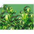 artland artprint »fantasie« groen