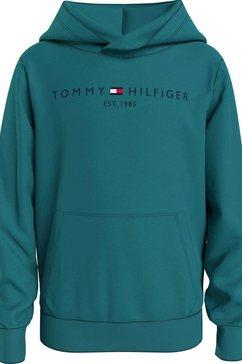 tommy hilfiger hoodie blauw