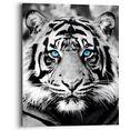 reinders! artprint op hout blue eyed tiger (1 stuk) zwart
