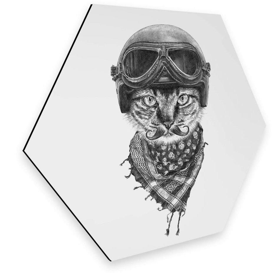 Wall-Art metalen artprint Biker kat wanddecoratie kattenartprint (1 stuk) voordelig en veilig online kopen