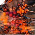 artland artprint rode bessen - wilde bessen in vele afmetingen  productsoorten - artprint van aluminium - artprint voor buiten, artprint op linnen, poster, muursticker - wandfolie ook geschikt voor de badkamer (1 stuk) oranje