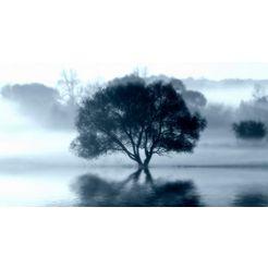 artprint op linnen »sprint tree« grijs