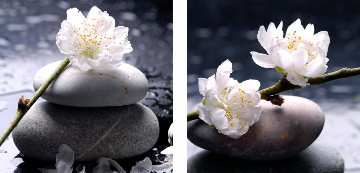 my home artprint op linnen Flower 2x 40/40 cm, voordelig en veilig online kopen