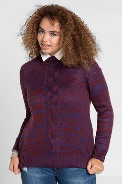 sheego casual trui met staande kraag multicolor