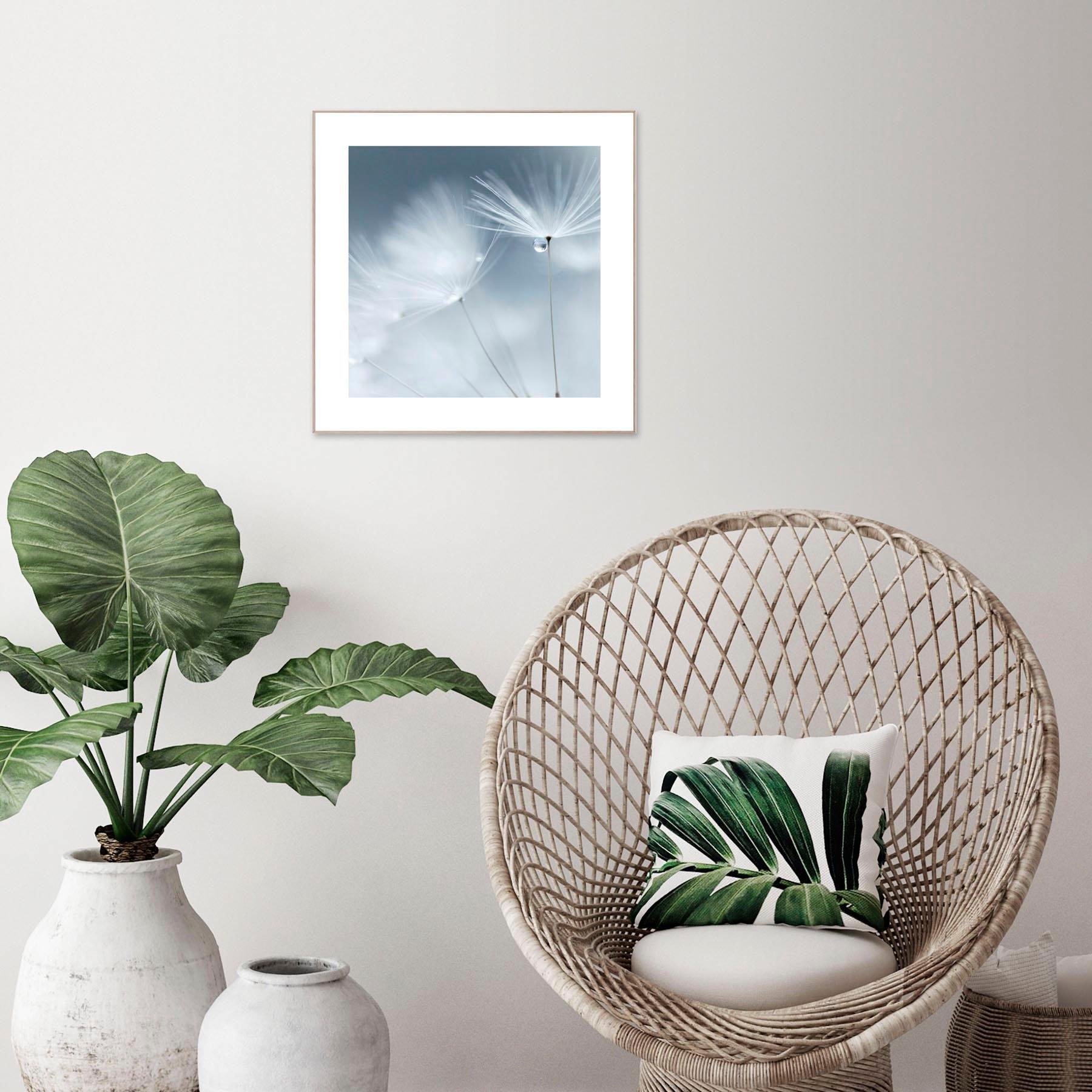 Reinders! artprint Slim Frame Wood 50x50 Dewdrop Dandelion online kopen op otto.nl
