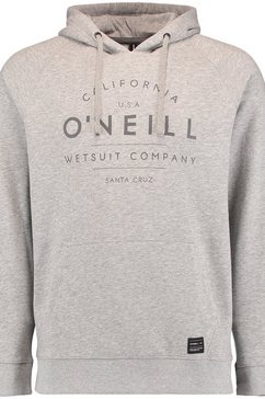 o'neill sweats hooded »o'neill hoodie« grijs