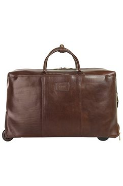 bagan reistas met trolleyfunctie »giovanni da verrazano« bruin