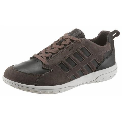 Geox herensneaker bruin