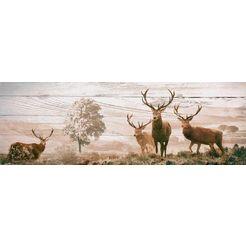 reinders! decoratief paneel edelherten 156x52 cm bruin