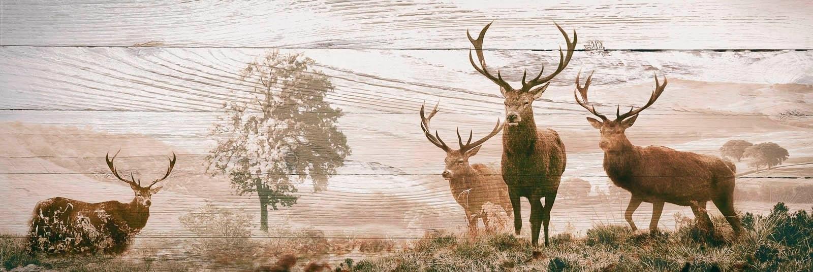 Reinders! Decoratief paneel Edelherten 156x52 cm goedkoop op otto.nl kopen