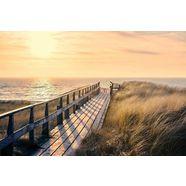 decoratief paneel »weg zum strand« groen