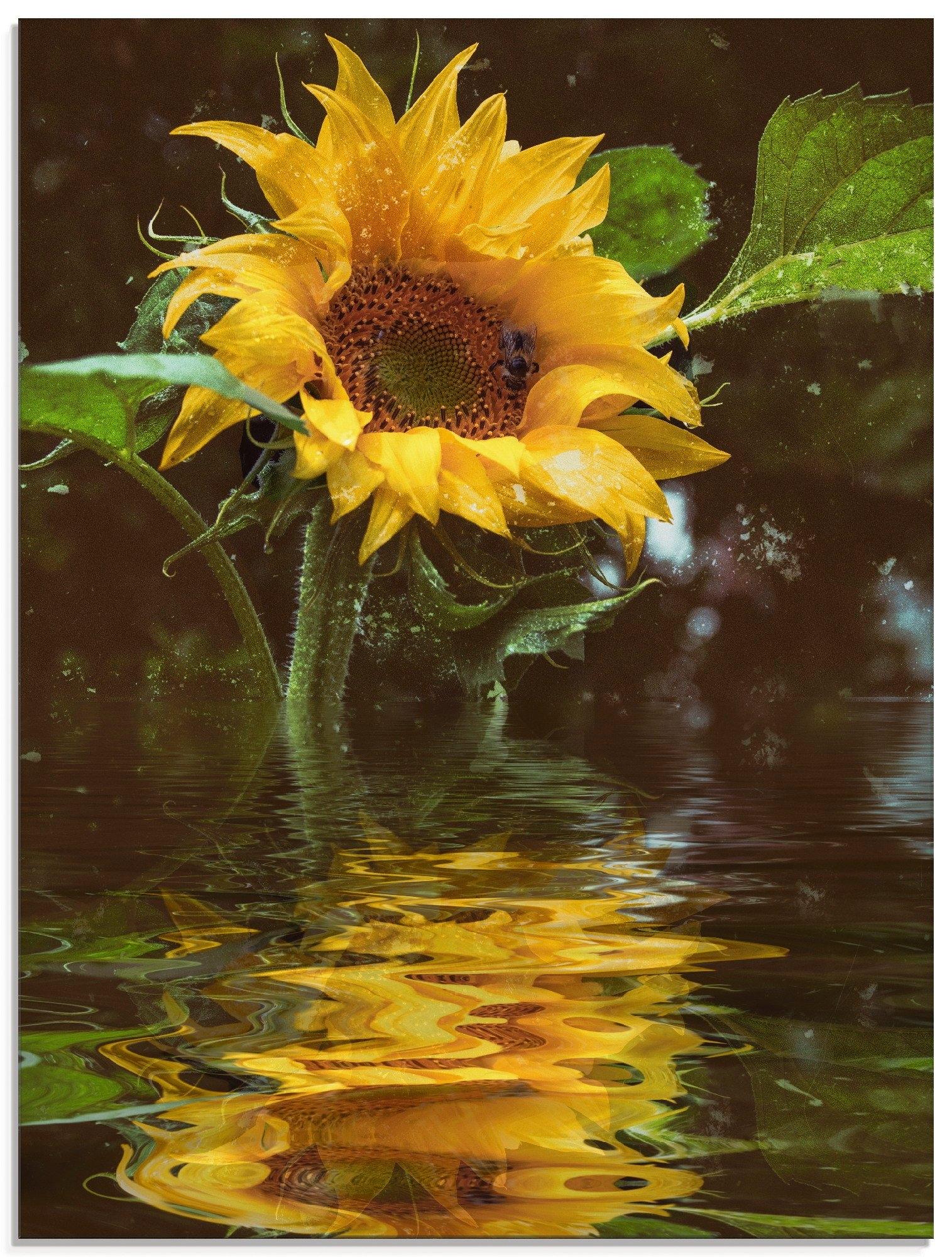 Artland print op glas Zonnebloem met waterreflectie (1 stuk) online kopen op otto.nl