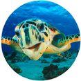 sanilo badmat schildpad traagschuim (1 stuk) blauw