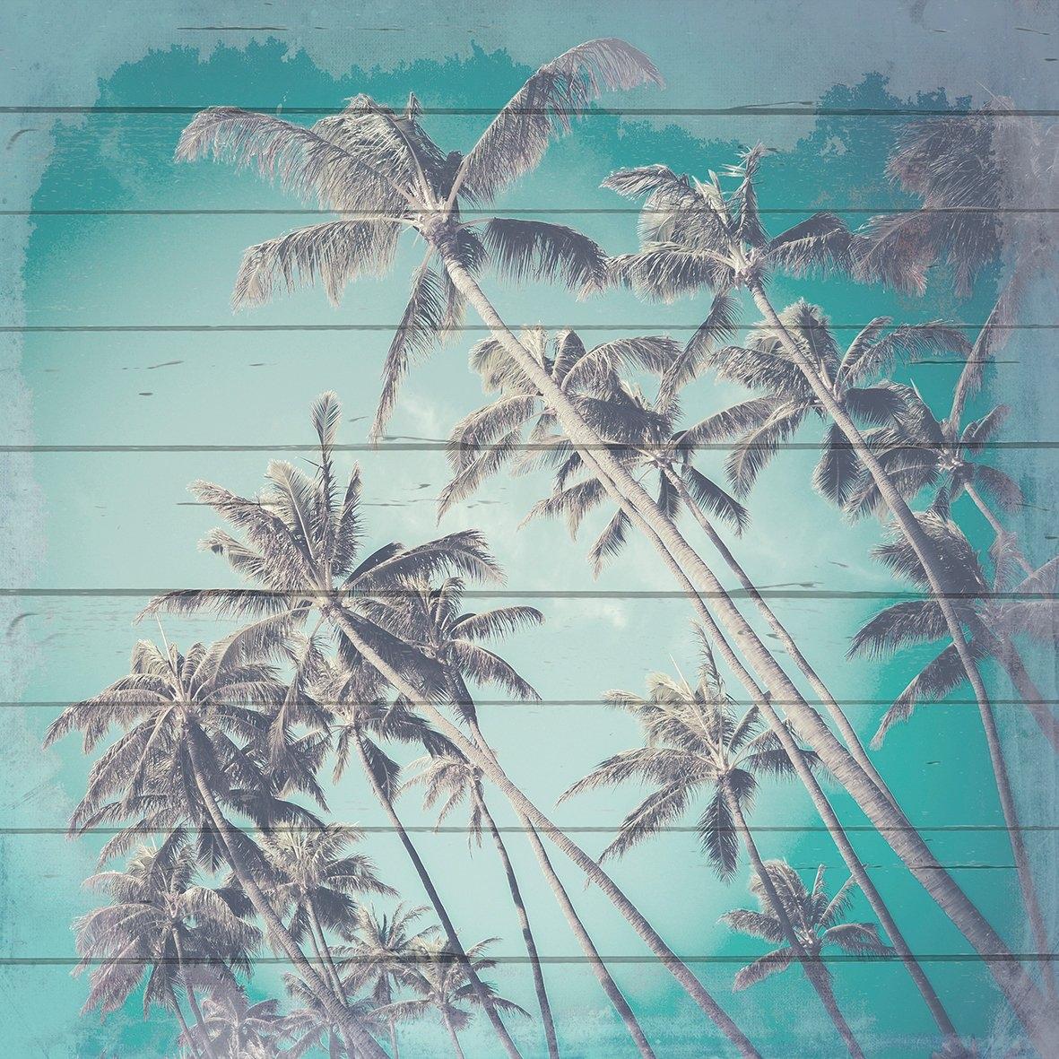Op zoek naar een Queence Artprint op hout »Palmlucht«, 40x40 cm echt hout? Koop online bij OTTO