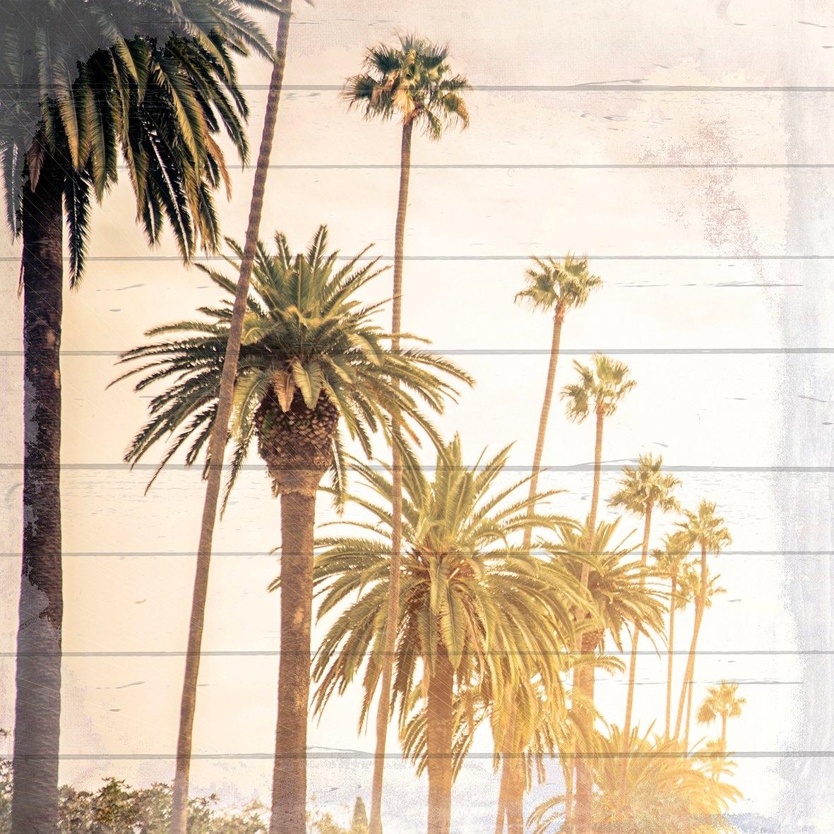 Queence Artprint op hout »zonnige palmen«, 40x40 cm echt hout bij OTTO online kopen