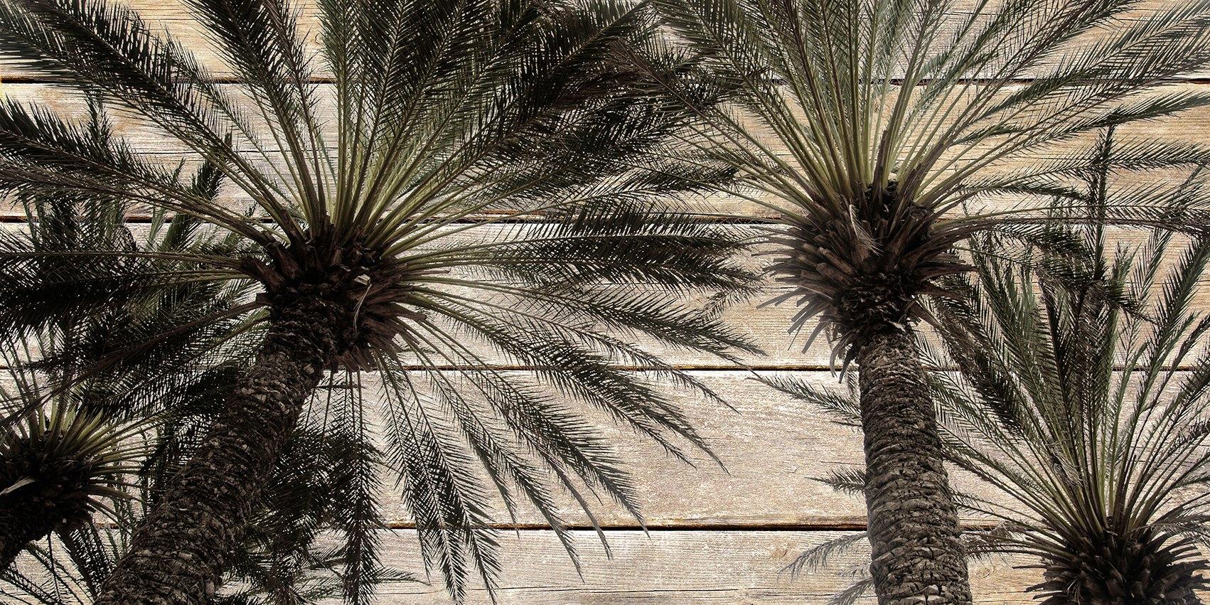 queence Artprint op hout »Vintage palmen«, 40x80 cm echt hout bij OTTO online kopen