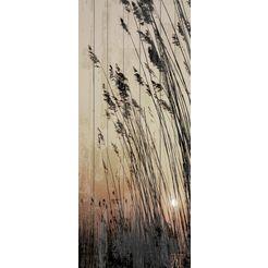 artprint op hout »riet zonsondergang«, 80x40 cm echt hout multicolor