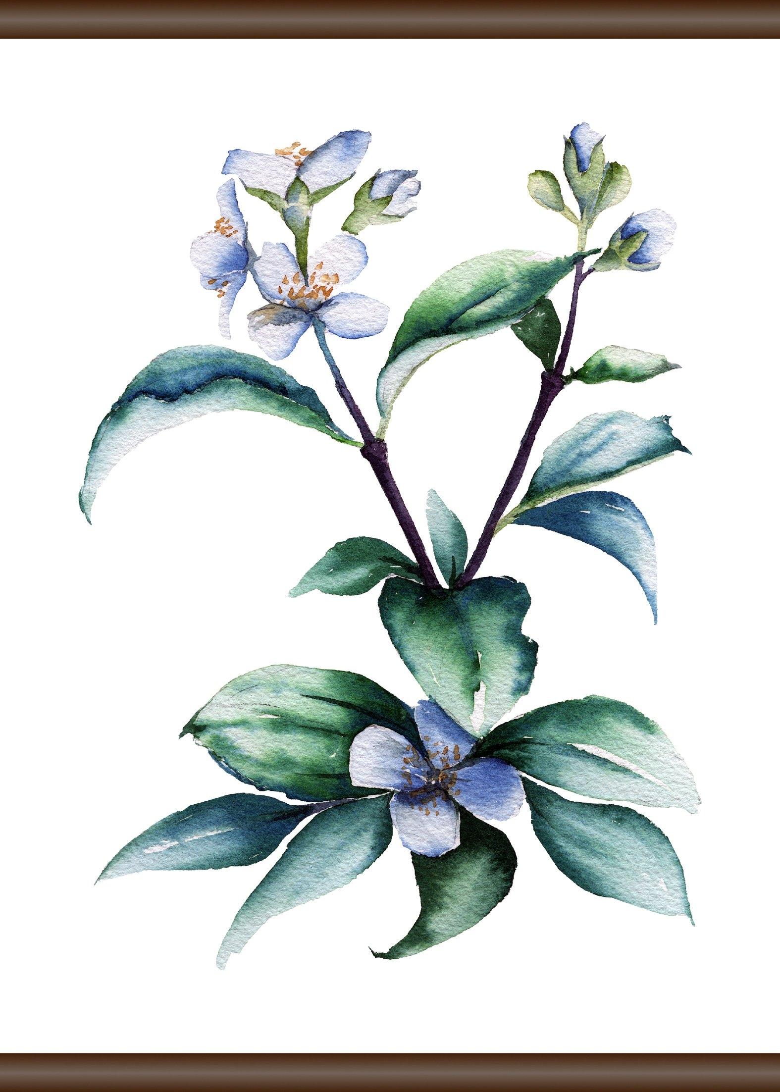 Queence Linnen »paarse plant«, Screen scroll schilderij 50x70 cm goedkoop op otto.nl kopen