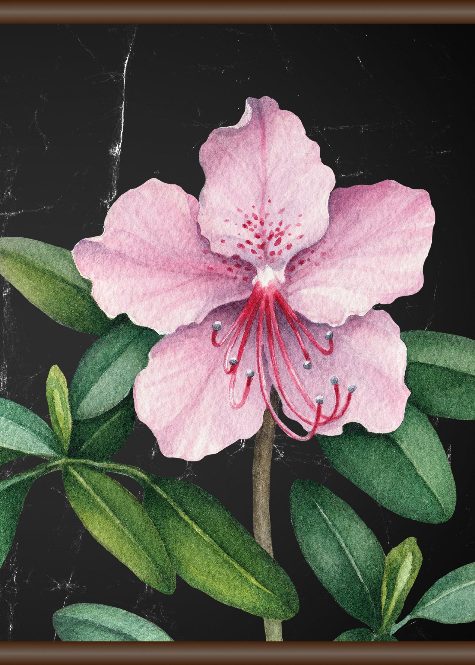 Queence Linnen »roze bloem«, Screen scroll schilderij 50x70 cm online kopen op otto.nl