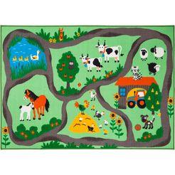 andiamo vloerkleed voor de kinderkamer boerderij laagpolig straattapijt multicolor