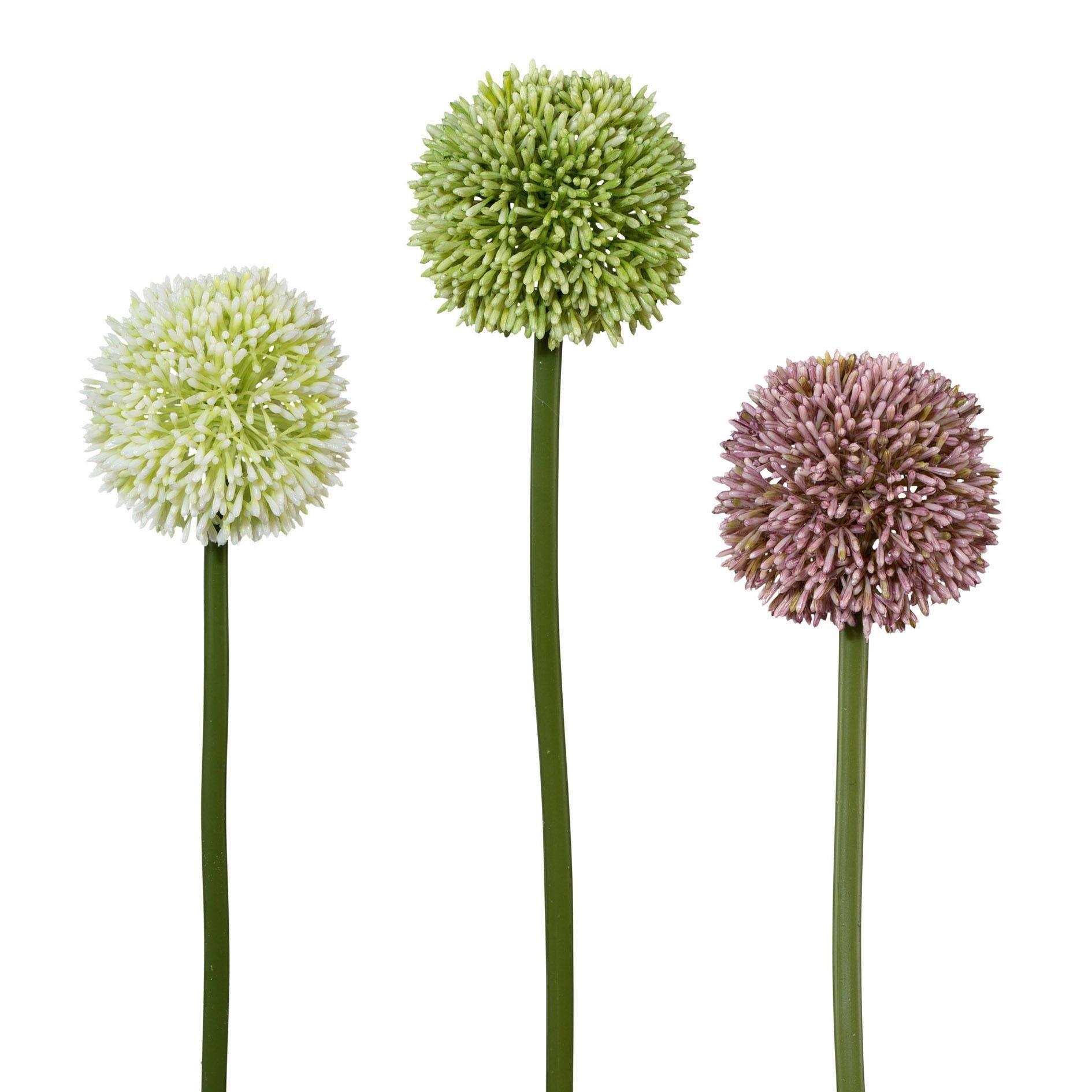 Op zoek naar een Creativ green kunstbloem (set, 3 stuks)? Koop online bij OTTO