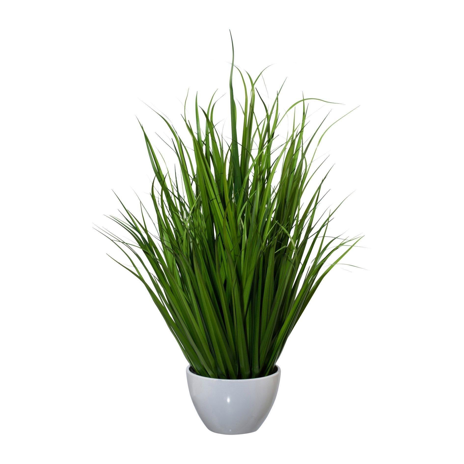 Creativ green kunstgras (1 stuk) goedkoop op otto.nl kopen