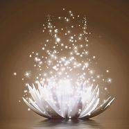 home affaire glazen artprint »v. georgiev: magie van de lotusbloem«, 125x50 cm bruin