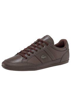 lacoste sneakers »chaymon bl 1 cma« bruin