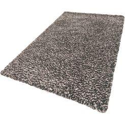 hoogpolig vloerkleed, »ducato«, festival, rechthoekig, hoogte 30 mm, machinaal getuft grijs