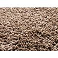 hoogpolig vloerkleed »lobby shaggy«, oci die teppichmarke, rechthoekig 52 mm hoog, machinaal geweven bruin