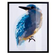 gmk home  living artprint »eisvogel« met zwarte lijst multicolor