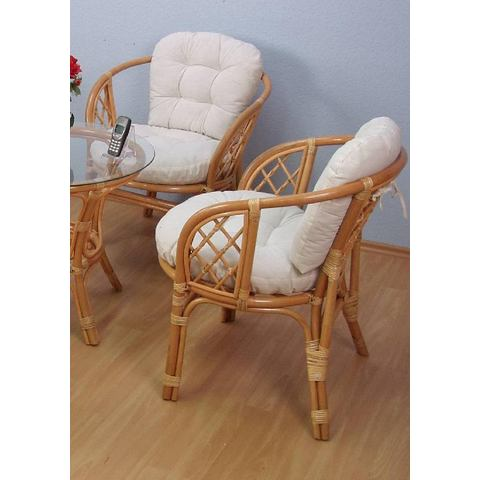 Eetkamerstoelen HOME AFFAIRE Rotan-fauteuil in set van 2 416960