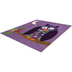 arte espina vloerkleed voor de kinderkamer joy 4049 uilmotief in sterke kleuren paars