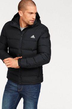 adidas performance outdoorjack helionic ho jacket zwart